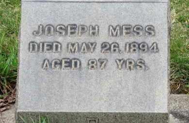 MESS, JOSEPH - Erie County, Ohio | JOSEPH MESS - Ohio Gravestone Photos