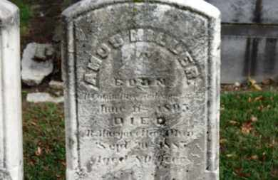 MILLER, AMOS - Erie County, Ohio | AMOS MILLER - Ohio Gravestone Photos