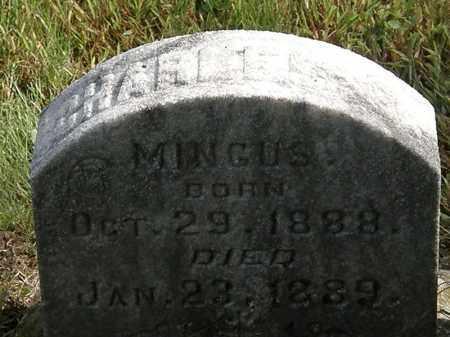 MINGUS, CHARLES - Erie County, Ohio | CHARLES MINGUS - Ohio Gravestone Photos