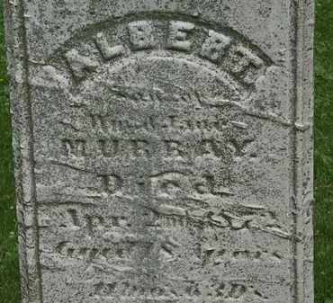 MURRAY, ALBERT - Erie County, Ohio | ALBERT MURRAY - Ohio Gravestone Photos