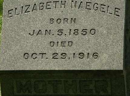 NAEGELE, ELIZABETH - Erie County, Ohio | ELIZABETH NAEGELE - Ohio Gravestone Photos