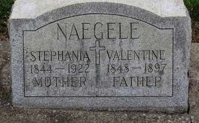 NAEGELE, VALENTINE - Erie County, Ohio | VALENTINE NAEGELE - Ohio Gravestone Photos