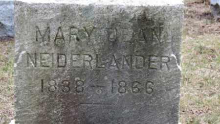 NEIDERLANDER, MARY - Erie County, Ohio | MARY NEIDERLANDER - Ohio Gravestone Photos