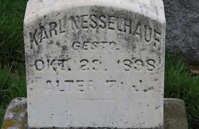 NESSELHAUF, KARL - Erie County, Ohio   KARL NESSELHAUF - Ohio Gravestone Photos