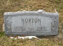 HOYT NORTON, ESTHER - Erie County, Ohio | ESTHER HOYT NORTON - Ohio Gravestone Photos