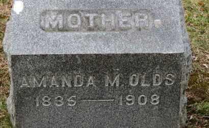 OLDS, AMANDA A. - Erie County, Ohio | AMANDA A. OLDS - Ohio Gravestone Photos