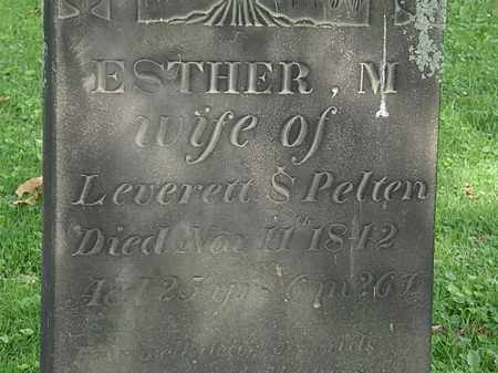 PELTON, LEVERETT - Erie County, Ohio | LEVERETT PELTON - Ohio Gravestone Photos