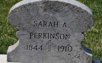 PERKINSON, SARAH A. - Erie County, Ohio   SARAH A. PERKINSON - Ohio Gravestone Photos