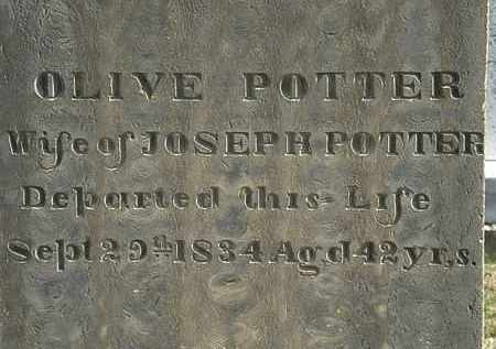 POTTER, OLIVE - Erie County, Ohio | OLIVE POTTER - Ohio Gravestone Photos