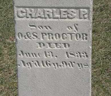 PROCTOR, S. - Erie County, Ohio | S. PROCTOR - Ohio Gravestone Photos