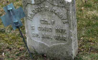 RALYA, HARRY B. - Erie County, Ohio | HARRY B. RALYA - Ohio Gravestone Photos