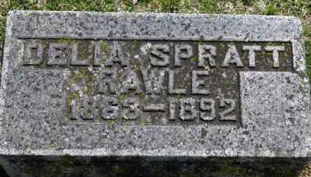SPRATT RAWLE, DELIA - Erie County, Ohio | DELIA SPRATT RAWLE - Ohio Gravestone Photos