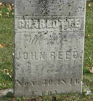REED, JOHN - Erie County, Ohio   JOHN REED - Ohio Gravestone Photos