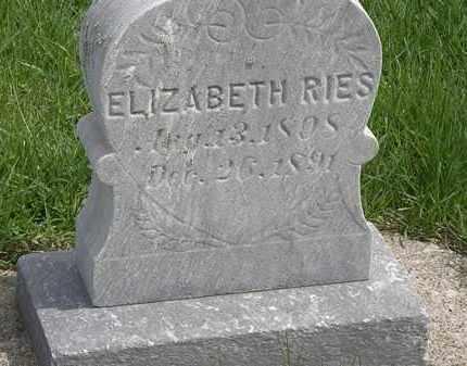 REIS, ELIZABETH - Erie County, Ohio   ELIZABETH REIS - Ohio Gravestone Photos