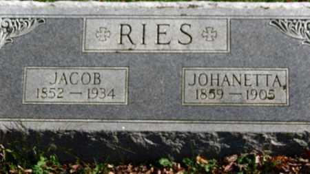 RIES, JACOB - Erie County, Ohio | JACOB RIES - Ohio Gravestone Photos