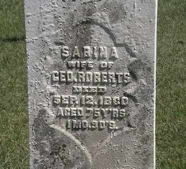ROBERTS, SABINA - Erie County, Ohio | SABINA ROBERTS - Ohio Gravestone Photos