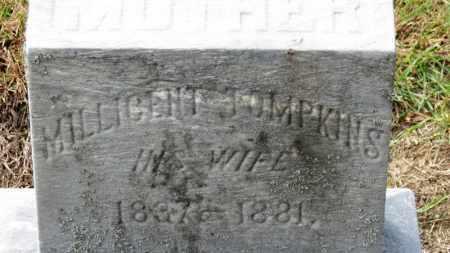 TOMPKINS ROBINSON, MILLICENT - Erie County, Ohio | MILLICENT TOMPKINS ROBINSON - Ohio Gravestone Photos