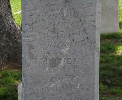 ROOT, HIRAM - Erie County, Ohio | HIRAM ROOT - Ohio Gravestone Photos