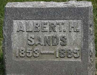 SANDS, ALBERT H. - Erie County, Ohio   ALBERT H. SANDS - Ohio Gravestone Photos