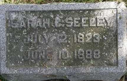 SEELEY, SARAH C. - Erie County, Ohio | SARAH C. SEELEY - Ohio Gravestone Photos