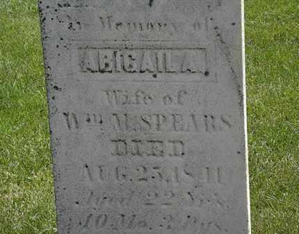 SPEARS, WM. - Erie County, Ohio | WM. SPEARS - Ohio Gravestone Photos