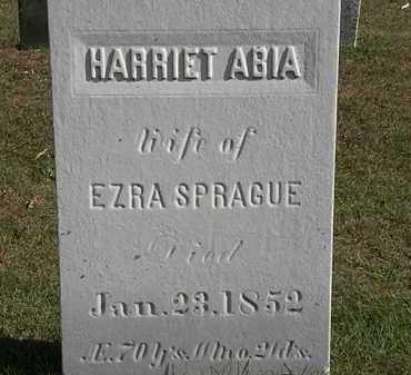 SPRAGUE, EZRA - Erie County, Ohio | EZRA SPRAGUE - Ohio Gravestone Photos