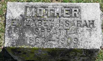 SPRATT, ELIZABETH SARAH - Erie County, Ohio | ELIZABETH SARAH SPRATT - Ohio Gravestone Photos