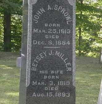 SPROWL, JOHN A. - Erie County, Ohio | JOHN A. SPROWL - Ohio Gravestone Photos