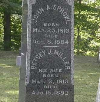 SPROWL, BETSEY J. - Erie County, Ohio | BETSEY J. SPROWL - Ohio Gravestone Photos