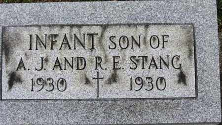 STANG, INFANT SON - Erie County, Ohio | INFANT SON STANG - Ohio Gravestone Photos