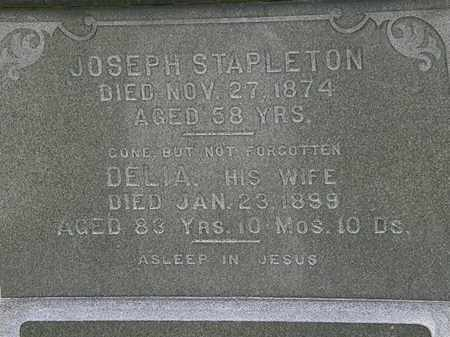 STAPELTON, DELIA - Erie County, Ohio | DELIA STAPELTON - Ohio Gravestone Photos