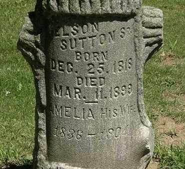 SUTTON, AMELIA - Erie County, Ohio | AMELIA SUTTON - Ohio Gravestone Photos