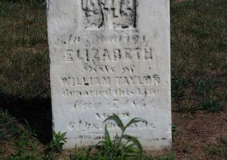 TAYLOR, ELIZABETH - Erie County, Ohio | ELIZABETH TAYLOR - Ohio Gravestone Photos
