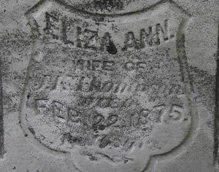 THOMPSON, ELIZA ANN - Erie County, Ohio | ELIZA ANN THOMPSON - Ohio Gravestone Photos