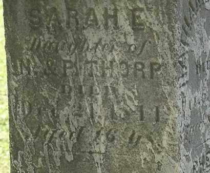 THORP, SARAH E. - Erie County, Ohio | SARAH E. THORP - Ohio Gravestone Photos