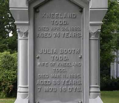 TODD, JULIA - Erie County, Ohio | JULIA TODD - Ohio Gravestone Photos