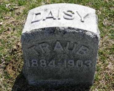 TRAUB, DAISY - Erie County, Ohio | DAISY TRAUB - Ohio Gravestone Photos