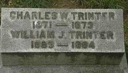 TRINTER, CHARLES W. - Erie County, Ohio | CHARLES W. TRINTER - Ohio Gravestone Photos