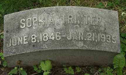 TRINTER, SOPHIA - Erie County, Ohio | SOPHIA TRINTER - Ohio Gravestone Photos