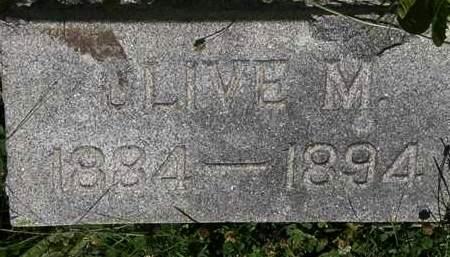 WAHL, OLIVE M. - Erie County, Ohio   OLIVE M. WAHL - Ohio Gravestone Photos