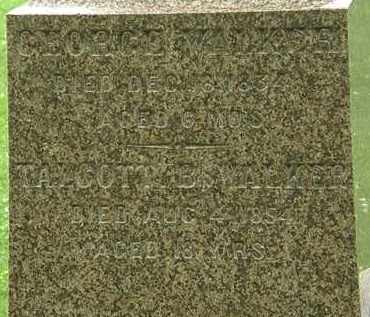 WALKER, GEORGE - Erie County, Ohio | GEORGE WALKER - Ohio Gravestone Photos