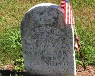 BROWN WARD, PHEBE - Erie County, Ohio | PHEBE BROWN WARD - Ohio Gravestone Photos