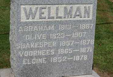 WELLMAN, SHAKESPER - Erie County, Ohio | SHAKESPER WELLMAN - Ohio Gravestone Photos