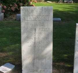 WELLS, MARY H. - Erie County, Ohio | MARY H. WELLS - Ohio Gravestone Photos