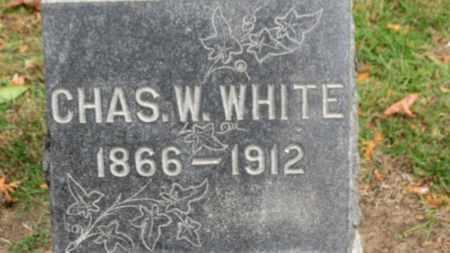 WHITE, CHAS. W. - Erie County, Ohio | CHAS. W. WHITE - Ohio Gravestone Photos