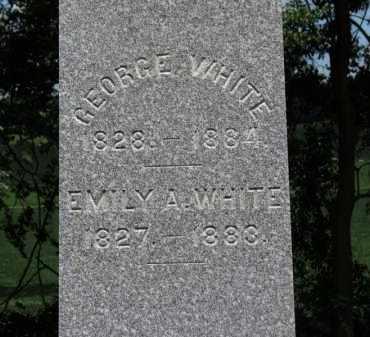 WHITE, EMILY A. - Erie County, Ohio   EMILY A. WHITE - Ohio Gravestone Photos