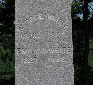 WHITE, GEORGE - Erie County, Ohio | GEORGE WHITE - Ohio Gravestone Photos