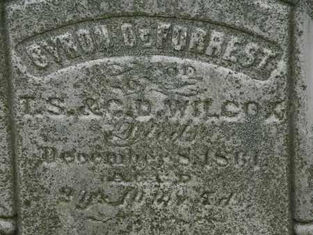 WILCOX, BYRON DEFORREST - Erie County, Ohio | BYRON DEFORREST WILCOX - Ohio Gravestone Photos