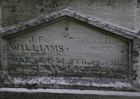 WILLIAMS, J.F. - Erie County, Ohio | J.F. WILLIAMS - Ohio Gravestone Photos