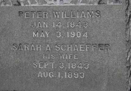 WILLIAMS, SARAH A. - Erie County, Ohio   SARAH A. WILLIAMS - Ohio Gravestone Photos